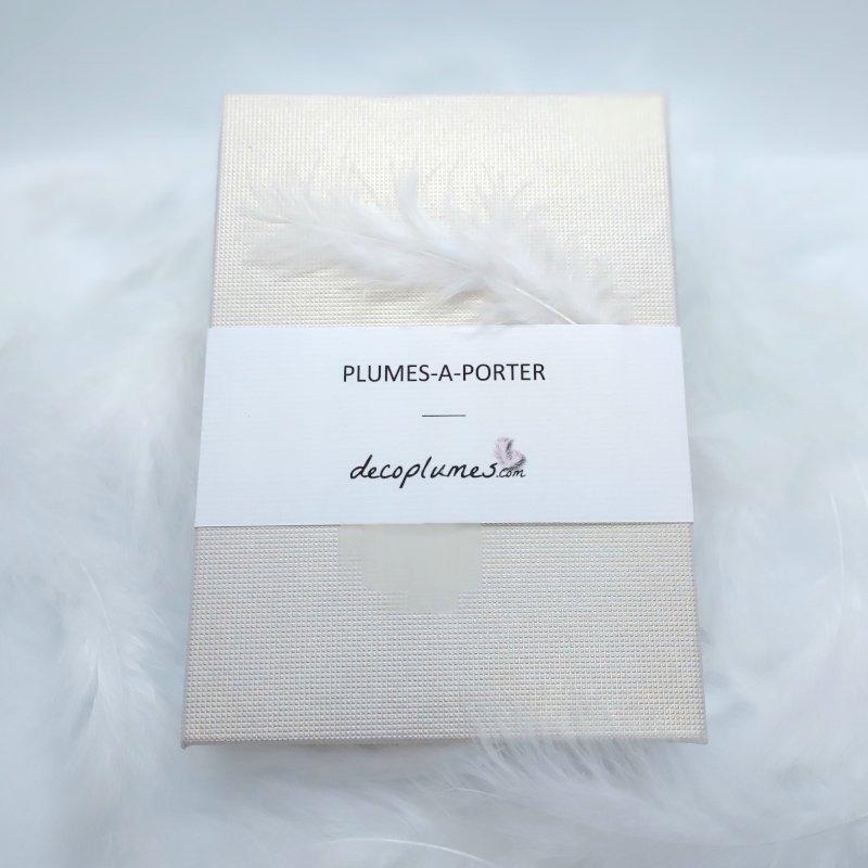 decoplumes-emballage-bijoux-boite-cadeau-packaging